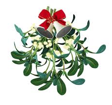 Buy Fresh Mistletoe For Sale Online